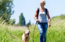 eine Frau geht im Grünen mit ihrem Hund spazieren